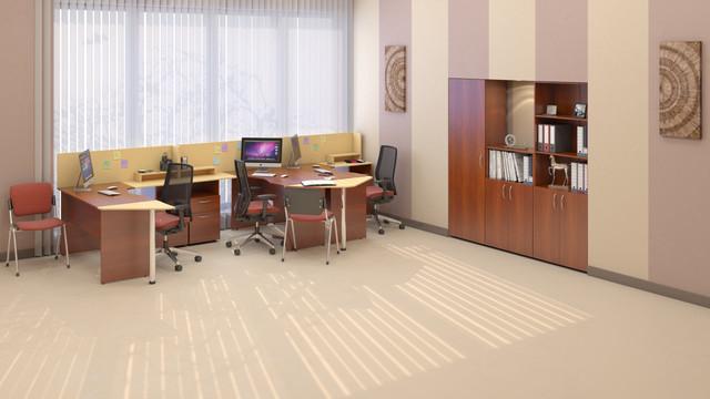 Офисный стол для бюджетной организации